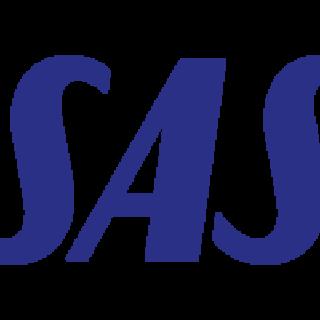 Скандинавские Авиакомпании лого