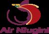 эйр ньюджини лого